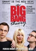 Постер Теория большого взрыва 1 сезон
