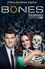 Постер Кости 10 сезон