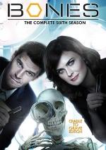 Постер Кости 6 сезон