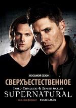 Постер Сверхъестественное 8 сезон