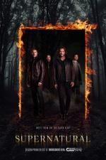 Постер Сверхъестественное 12 сезон